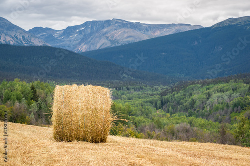 Aluminium Beige Mountain Meadow Hay