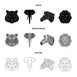 Tiger, lion, elephant, zebra, Realistic animals set collection icons in black,monochrome,outline style vector symbol stock illustration web.
