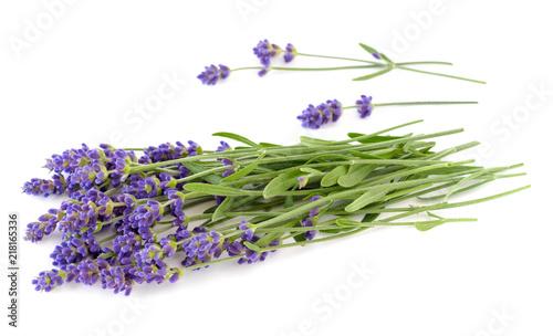 Foto Spatwand Lavendel Lavender bunch on a white