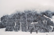 Quadro Neblige Winterlandschaft mit Tannen