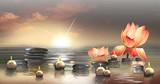 Fototapety Wandbild mit Seerosen, Steinen im Wasser und schwimmenden Kerzen