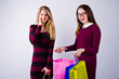 Two beautiful friends in cherry dresses posing with multicolored shopping bags in the studio.