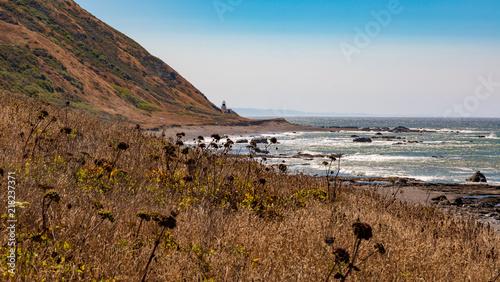 Aluminium Vuurtoren Punta Gorda lighthouse from the distance with wild plants