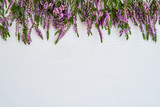 Border of common heather on white background. Copy space, top view. - 218277551