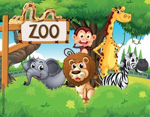 Fotobehang Zoo Wild animals at the zoo