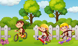 A group of playful monkey - 218316961