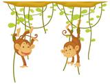 Monkey hanging on the vine - 218317190