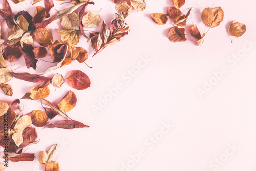 Autumn composition. Frame made of autumn flowers and leaves on pastel pink background. Flat lay, top view, copy space - 218320530