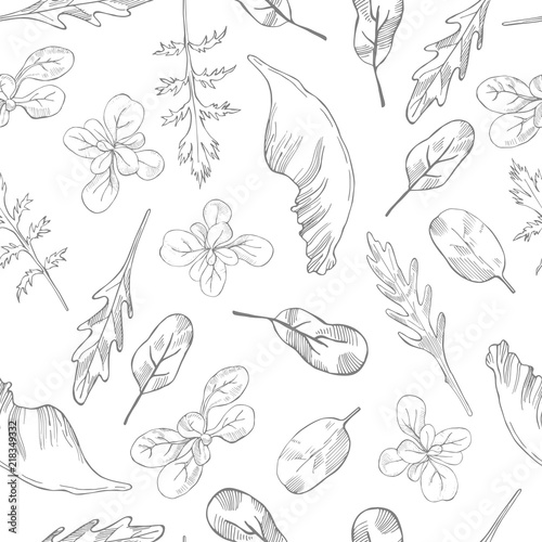 Hand Drawn Different Kinds Of Lettuce On White Background Vector