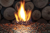 burn wood pellet and trunks - 218379151
