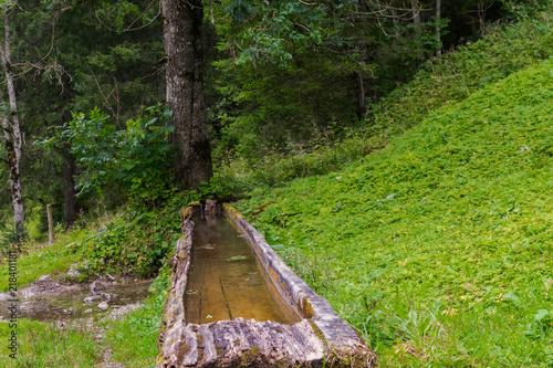 Fotobehang Weg in bos agua