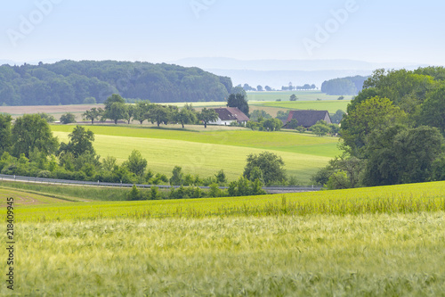 canvas print picture agricultural scenery at spring time
