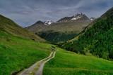 ścieżka na hali alpejskiej z widokiem dolinę