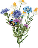 Vector image of a bouquet of wildflowers. All objects isolated. - 218476380