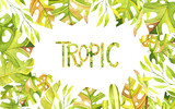 Watercolor tropic frame. Tropic branches and leaves. Perfect for you postcard design, wallpaper, print, invitations, patterns, travel, poster, packaging etc. - 218511921