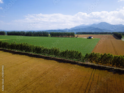 Canvas Blauwe hemel 北海道の空撮