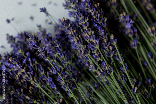 lavender bouquets on white background. lavender flowers. lavender. summer. lavender close-up