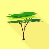 Savanna tree icon. Flat illustration of savanna tree vector icon for web - 218673537