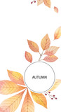 Watercolor autumn vector card template design of leaves and branches isolated on white background. - 218752145