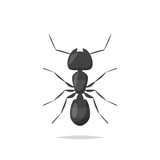 Ant vector isolated illustration - 218780198