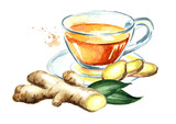 Ginger tea, Ginger root, concept of healthy drink. Watercolor hand drawn illustration, isolated on white background - 218814748