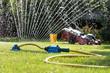 Grass sprayer with mower in garden