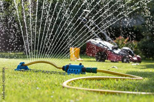 Fototapeta Grass sprayer with mower in garden