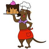 Cartoon dachshund dog chef character - 218906570