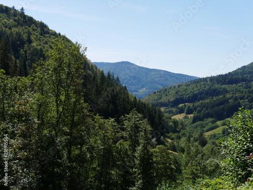 Canvas Blauwe hemel Schwarzwald
