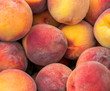 fresh ripe peaches in the box ready for sale - 218918500