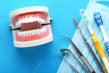 Teeth model with dental tools and toothbrushes on blue background - 218933937