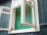 window with mosquito net