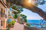 Monaco village in Monaco, Monte Carlo, France. Walking street with beautiful buildings along the coast. - 218990583