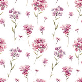 Watercolor floral phlox pattern - 219008710