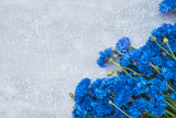 Blue Cornflower border on gray background. Top view, copy space. Summer background