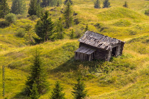 old leaning wooden shed on a green meadow surrounded by trees buy