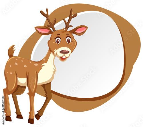 cute deer with splash frame   Buy Photos   AP Images   DetailView