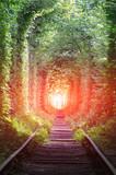 railway in forest - 219092507