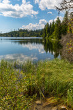 lake in forest - 219092577