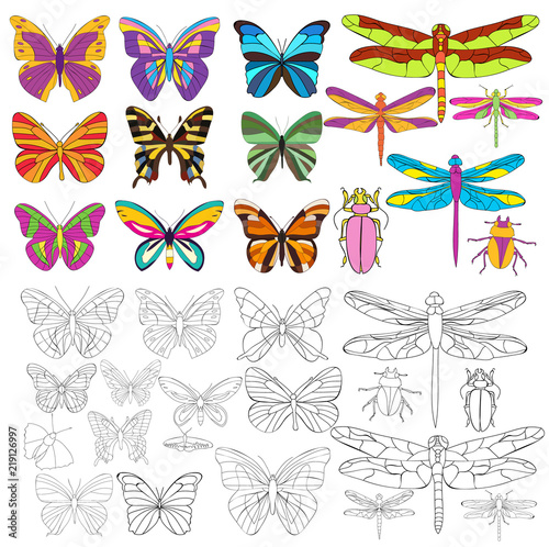 vector, isolated, insect set of butterflies and dragonflies, coloring book - 219126997
