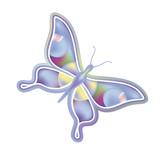 fantasy butterfly illustration