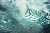 Forest artistic turquoise colored blurry fern plants in morning sunlight. Selective focus used. - 219197391