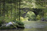 The spring of the forest river with magic old stone bridge, the Kamnik Bistrica, Slovenia.  - 219197717