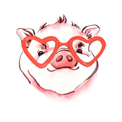 Pig watercolor illustration of hand-painted. Symbol of New Year 2019.