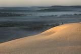 dune et foret au lever du soleil