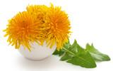 Medicinal dandelion leaf