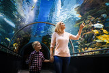 Mother and son watching sea life in oceanarium - 219285922
