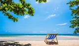Tropical tree and beach chair at white sand beach and blue sea - 219293779