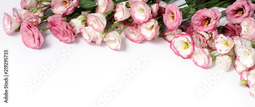 border of pink flowers - 219295735