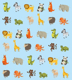 blue baby Wallpapers with different animals